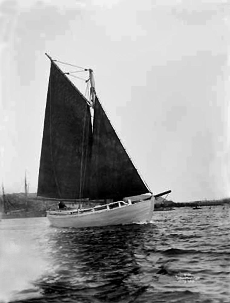 1906_wilse.jpg